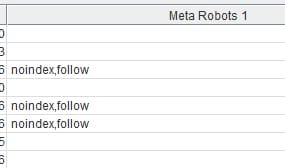 Links Internos - Meta Robots